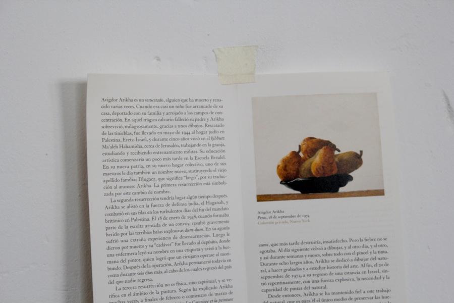 AVIGDOR-ARIKHA-pintura