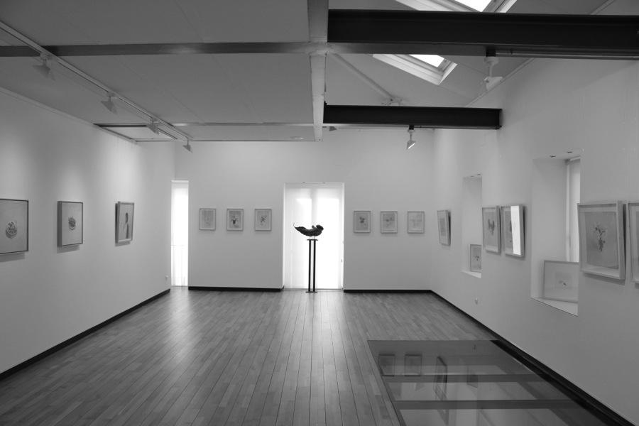 exposición-galeria-nolde