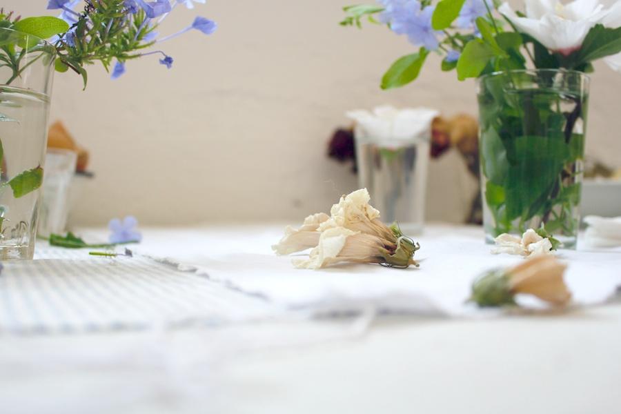 hibiscus-bodegon-pintura-figurativa-realismo