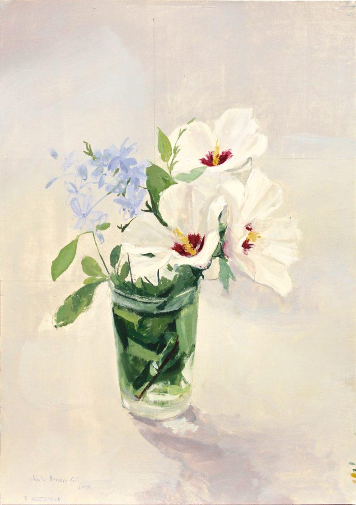 Hibiscus Blanco con Celestina