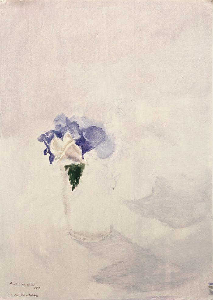 Hibiscus Blanco - tarde