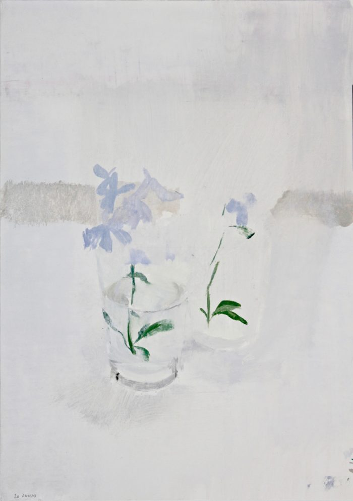 Flor de Celestina